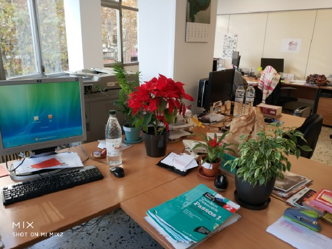 La meva taula de treball a la sala compartida. M'envolto de plantes que eliminen el mal rotllo.